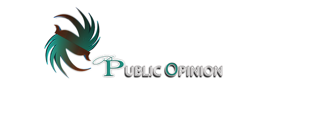 public Opinion Logo - Survey an Polling systems in Nigeria